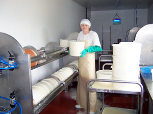 Cheesemakers at Llanboidy
